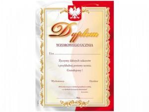 dyplom-wzro-uczen3_l